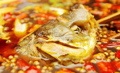 美蛙鱼头加盟利润